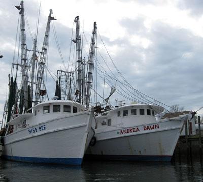fishing boats, lockwood folly river