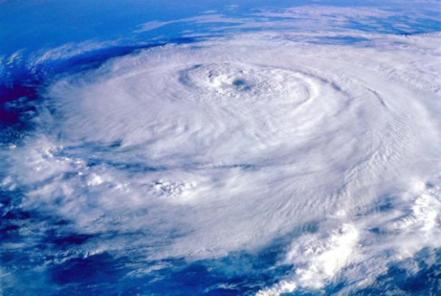hurricane thumb