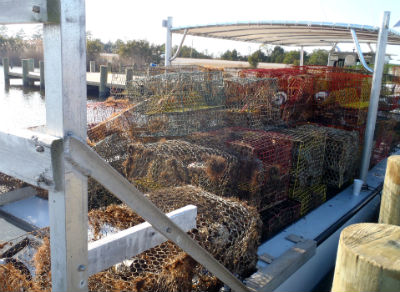 This boatload of derelict crab pots were retrieved all in a day's work on the water for Troy Outland and his mate. The Outer Banks watermen were hired by the N.C. Coastal Federation's two-year pilot program to collect abandoned crab pots. Photo: staff