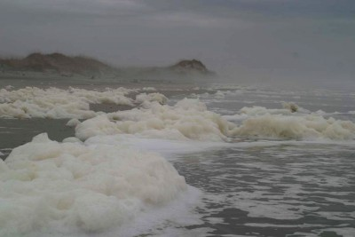 Sea foam. Photo: Sam Bland.