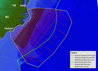 The map shows the seismic surveys that are proposed for N.C. waters. The area of intense surveys are shaded. Map: N.C. Division of Coastal Management