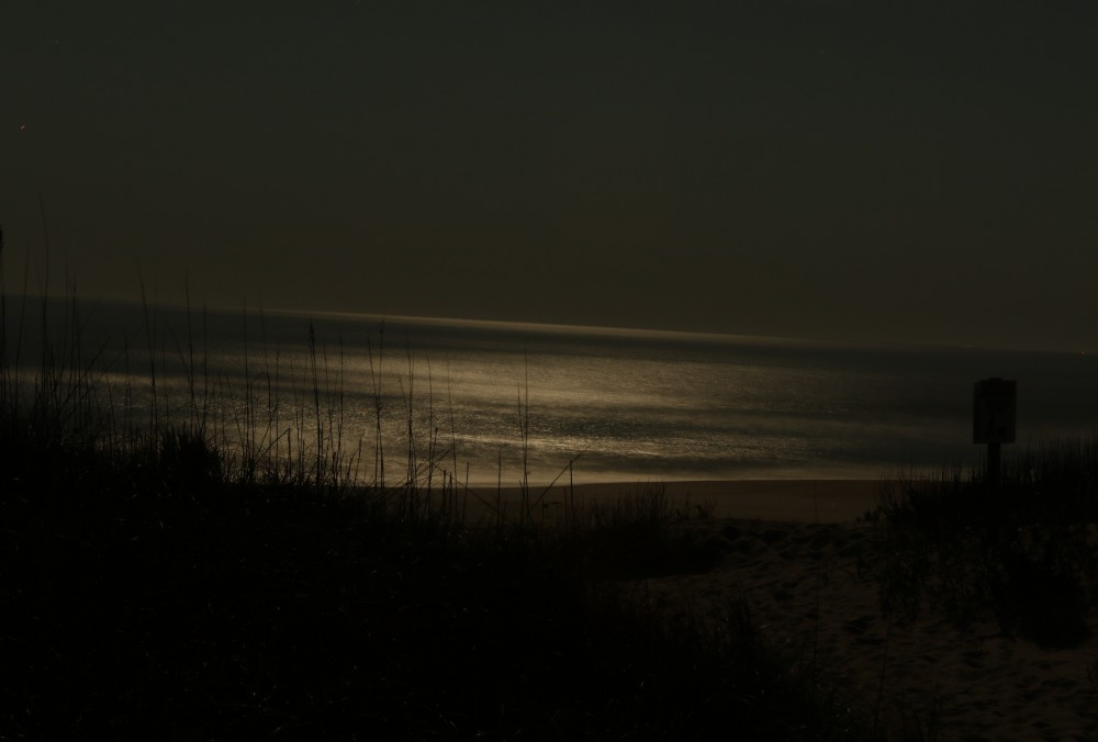 As I approached the beach, the lightness of the night intensified from the reflection of the moon beams off the surface of the ocean. The ocean shimmered as if a powerful search light was scanning the incoming swells. The constant crashing of waves sounded like thunder from a distant storm.