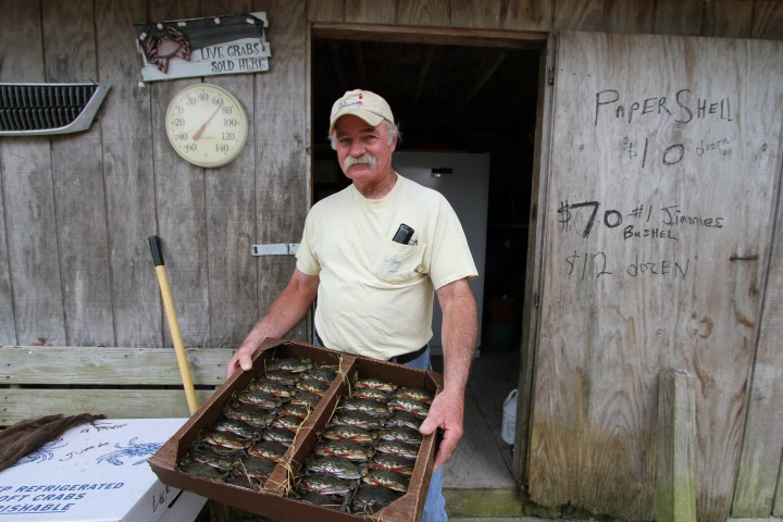 An N.C. crabber shows off his soft shell crab harvest. Photo: Sam Bland