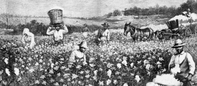 The introduction of slavery in the American South brought with it a particularly deadly strain of malaria. Illustration: Library of Congress