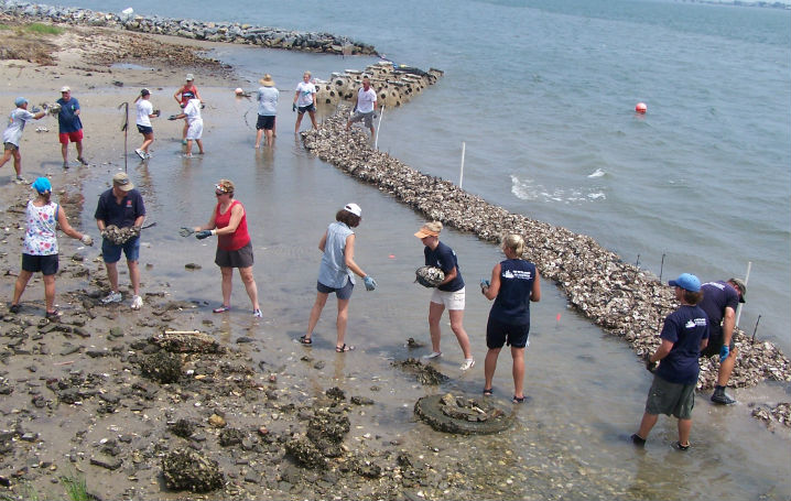 Volunteers create an oyster reef off Carteret Community College with bags of oysters shells
