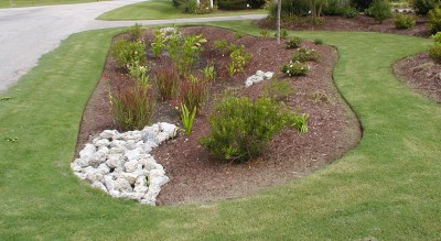 Rain gardens are effective, attractive and low-cost way to reduce the flow of stormwater runoff. Photo: N.C. Coastal Federation