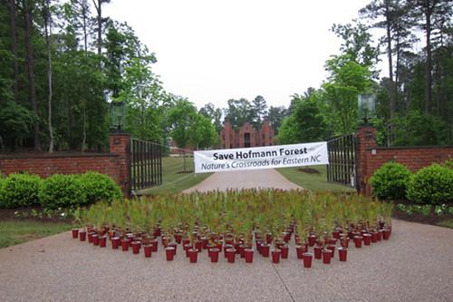Hofmann Forest protest