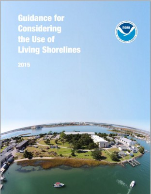 """The National Oceanic and Atmospheric Administration's """"Guidance for Considering the Use of Living Shorelines""""  explains benefits of natural shoreline stabilization projects. Photo: NOAA"""