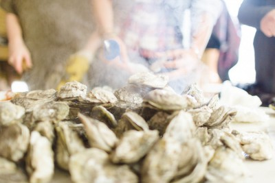 Communities have gathered around steamed oysters for centuries. Photo: Baxter Miller