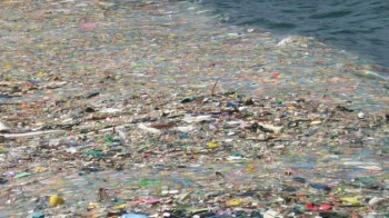 The Great Pacific Garbage Patch keeps growing every year. Photo: Oceanus