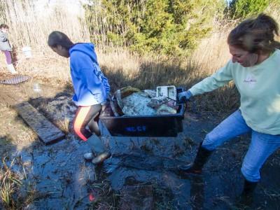 Volunteers collect debris in a marsh. Photo: Kip Tabb
