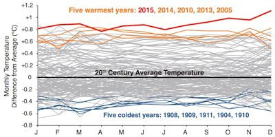 Global temperature anomalies plotted by month from 1880 to 2015. Each year is represented by a single line. Blue lines are the five coldest years, and orange lines are the second- through fifth-warmest years. The warmest year—2015—is shown in red. Data for graph from NOAA.