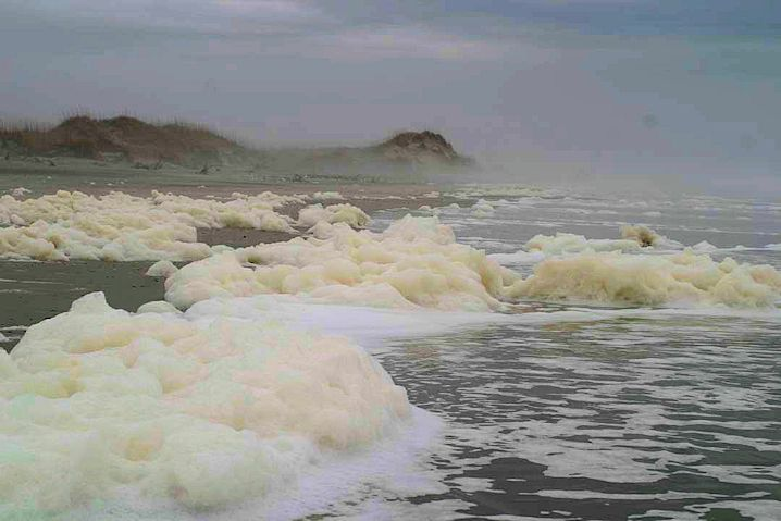 Winter winds drive sea foam onto the beach. Photo: Sam Bland