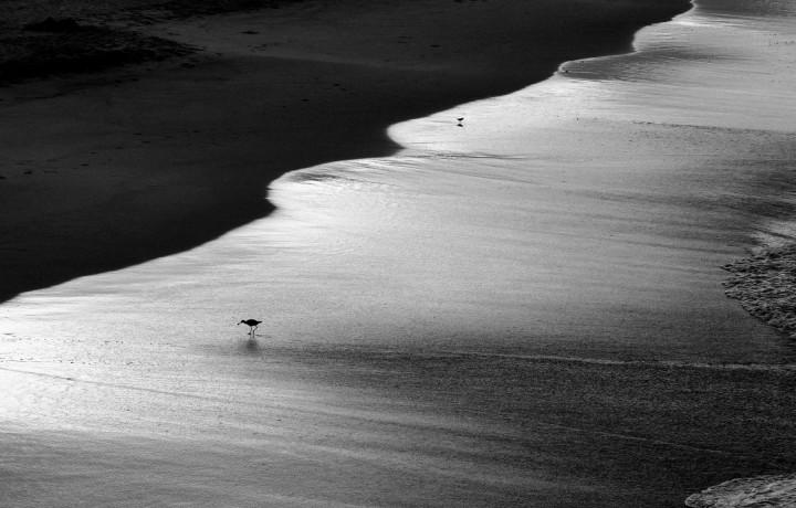 """Sunrise Light"" by Corey Cannon."