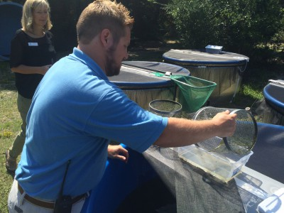 Fort Fisher Aquarium Director Peggy Sloan and Nate Akers check for metamorphs at the aquarium's outdoor tanks last summer. Photo: Mark Hibbs