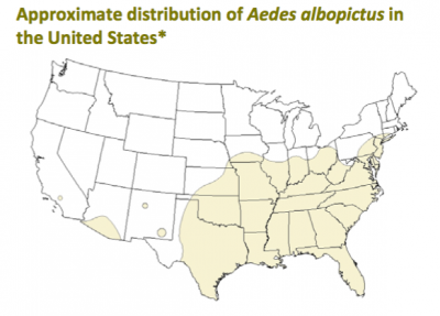 Aedes albopictus, also known as Asian Tiger mosquitoes, are also capable of spreading Zika virus. Map courtesy Centers for Disease Control and Prevention, 2013