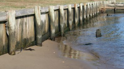A bulkhead permit can generally be received in North Carolina much faster than a permit for a living shoreline. Photo: Chesapeake Bay Foundation