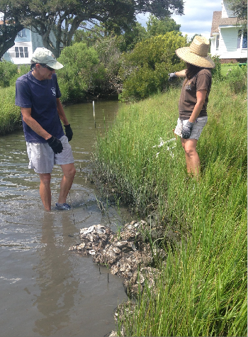 Sam Bland, left, and Lexia Weaver install a living shoreline of oyster shells. Photo: N.C. Coastal Federation