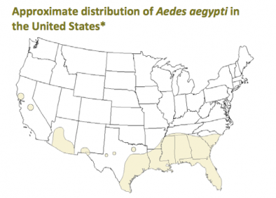 Aedes aegypti is one type of mosquito responsible for the spread of Zika virus. Map courtesy Centers for Disease Control and Prevention, 2013