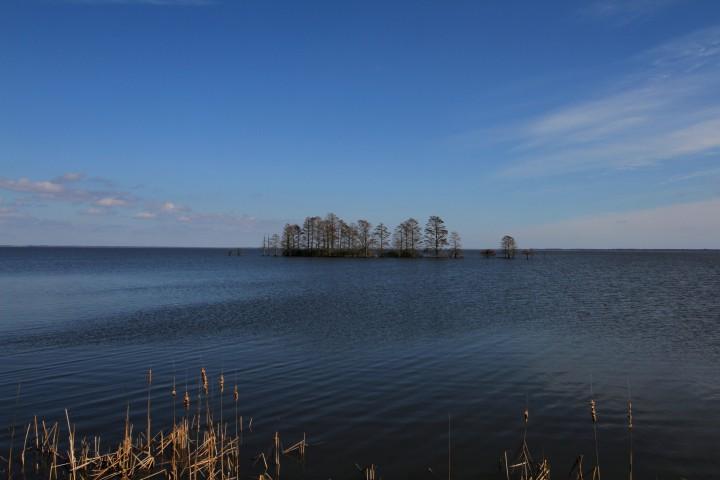Lake Mattamuskeet 2The refuge's main feature is the shallow 40,000-acre Lake Mattamuskeet. Photo: Sam Bland