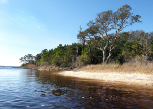 About $1.125 million is set aside in the bond for Hammocks Beach State Park. Photo: N.C. State Parks