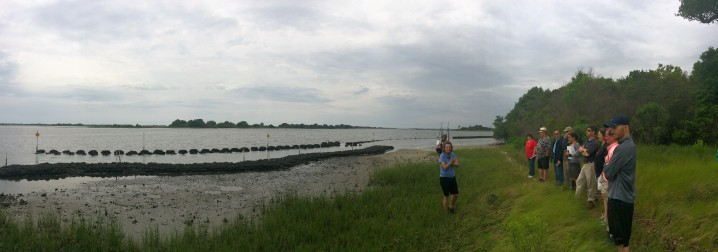 N.C. Coastal Federation scientist Tracy Skrabal leads a group on a tour of the restored marsh and oyster sills that together make up a living shoreline at Morris Landing. Photo: Mark Hibbs