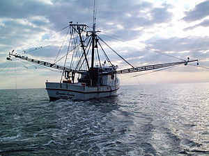 """Spectrum would communicate with commercial and recreation fishermen to coordinate fishing activities with testing. Photo"""" Wikipedia"""