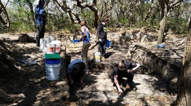 Volunteers and scientists dig for artifacts in Buxton. Photo: Croatoan Archaeology Society