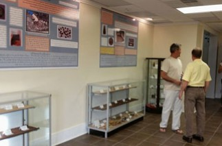 New information and artifacts have been displayed at the Hatteras Community Building. Photo: Croatoan Archaeology Society