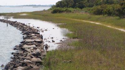 A living shoreline project on Stump Sound in Onslow County. Photo: N.C. coastal Federation