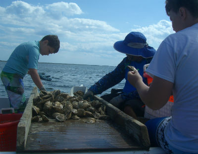 The children cull oysters in the boat. Photo: Pat Garber