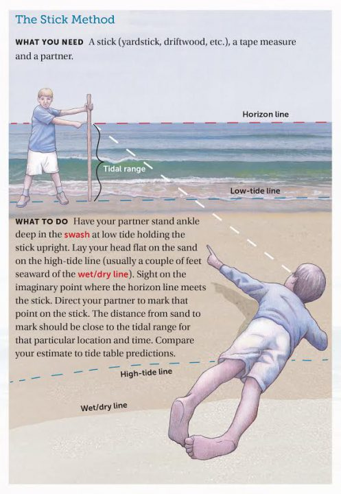 A tidal range estimation activity from LESSONS FROM THE SAND: FAMILY-FRIENDLY SCIENCE ACTIVITIES YOU CAN DO ON A CAROLINA BEACH by Charles O. Pilkey and Orrin H. Pilkey. Copyright © 2016 by Charles O. Pilkey and Orrin H. Pilkey. Illustrations © 2016 by Charles O. Pilkey. Published by the University of North Carolina Press. Used by permission of the publisher.