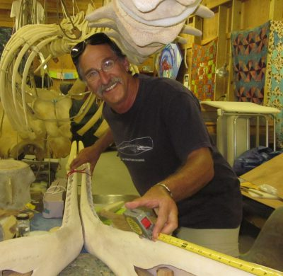 Keith Rittmaster has devoted his career to protecting and saving marine mammals. Photo: N.C. Maritime Museum