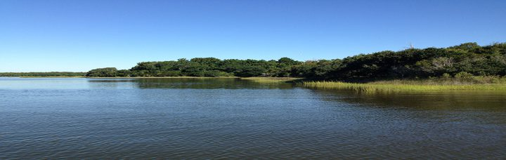 Hammocks Beach State Parks mainland area recently expanded by about 290 acres. Photo: Hammocks Beach State Park