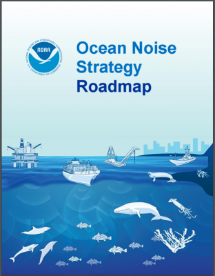 NOAA's agency-wide Ocean Noise Strategy is intended to ensure that noise effects on aquatic species and their habitat are adequately addressed during the next 10 years.