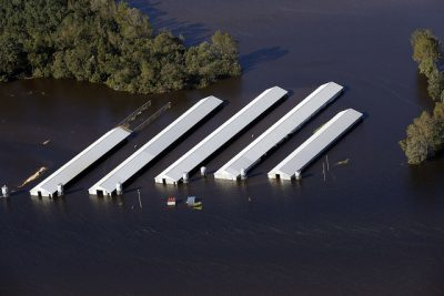 A concentrated animal feeding operation in Duplin County is inundated by the Northeast Cape Fear River. Photo: Rick Dove, Waterkeeper Alliance