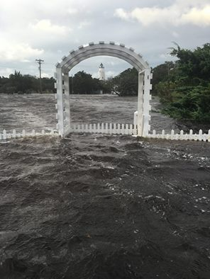 Ocracoke locals say the water that flooded streets and yards rose higher than they'd ever seen. Photo: Allan Casavat