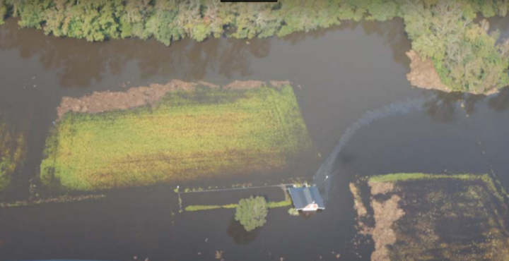 The sheen of an unknown substance flows from an inundated barn. Photo: U.S. Coast Guard