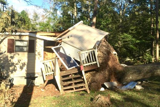 A home shows damage caused by uprooted and falling trees. Photo: Dee Langston