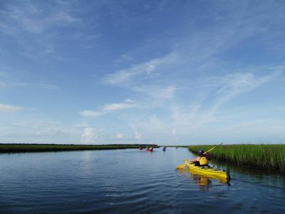 Paddlers with a Second Wind eco-tour head out on the water. Photo: Second Wind Eco Tours