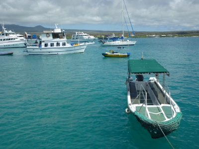 A water taxi and other vessels ply the waters of the Galapagos. Photo: David Adam Kess/Wikipedia