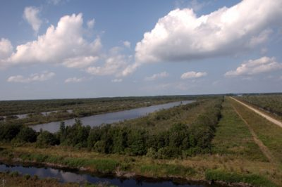The program at Pocosin Lakes includes water management and wetlands restoration. Photo: U.S. Fish and Wildlife