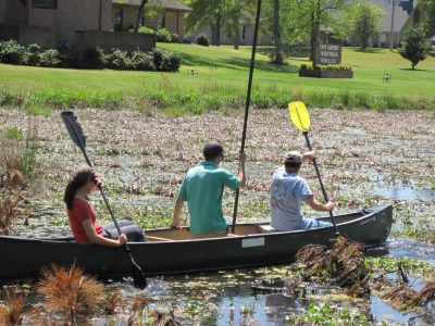 A North Carolina Coastal Federation crew sets out in a canoe prior to the restoration in April to survey the ponds, which were choked with non-native plants. Photo: North Carolina Coastal Federation