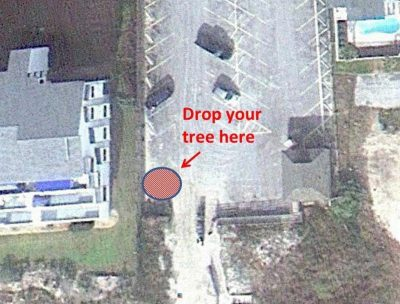 In Pine Knoll Shores, Christmas trees may be dropped off in the southwest corner of the Iron Steam Public Beach Access for use in building dunes in town. Photo courtesy Pine Knoll Shores