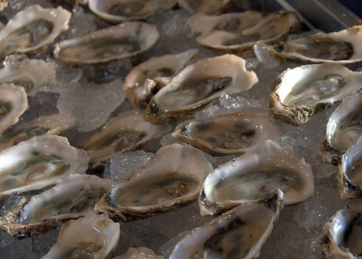 Oysters served on the half-shell. File photo