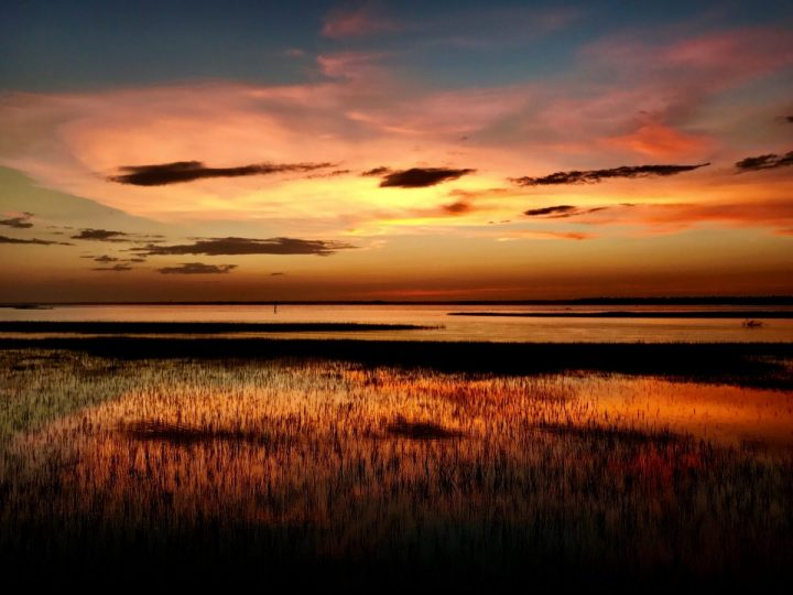 North Carolina Sea Grant, APNEP offer research funding | Coastal Review - Coastal Review Online