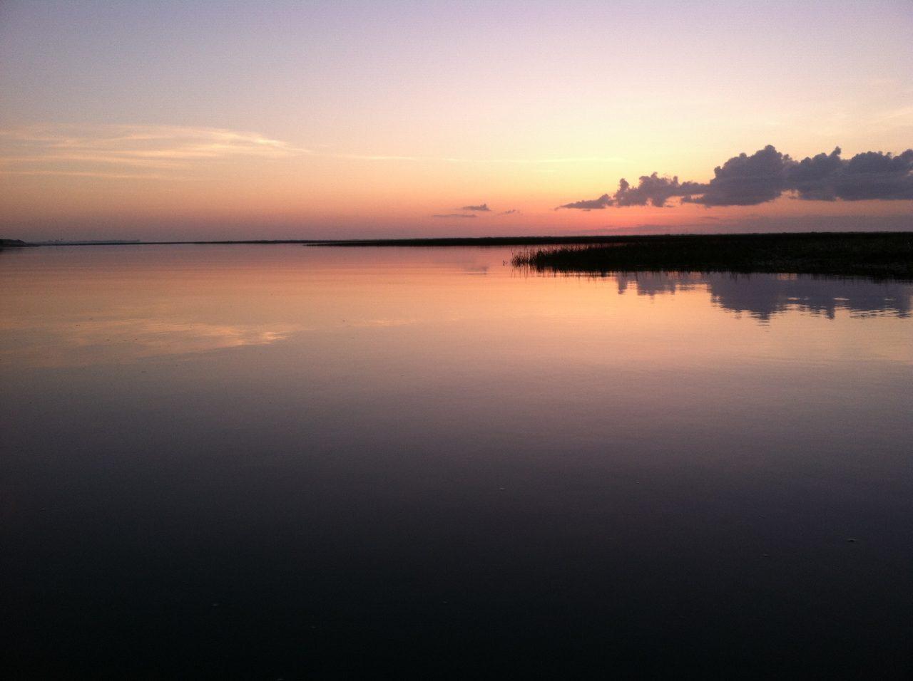 Masonboro Island Reserve. Photo: Division of Coastal Management