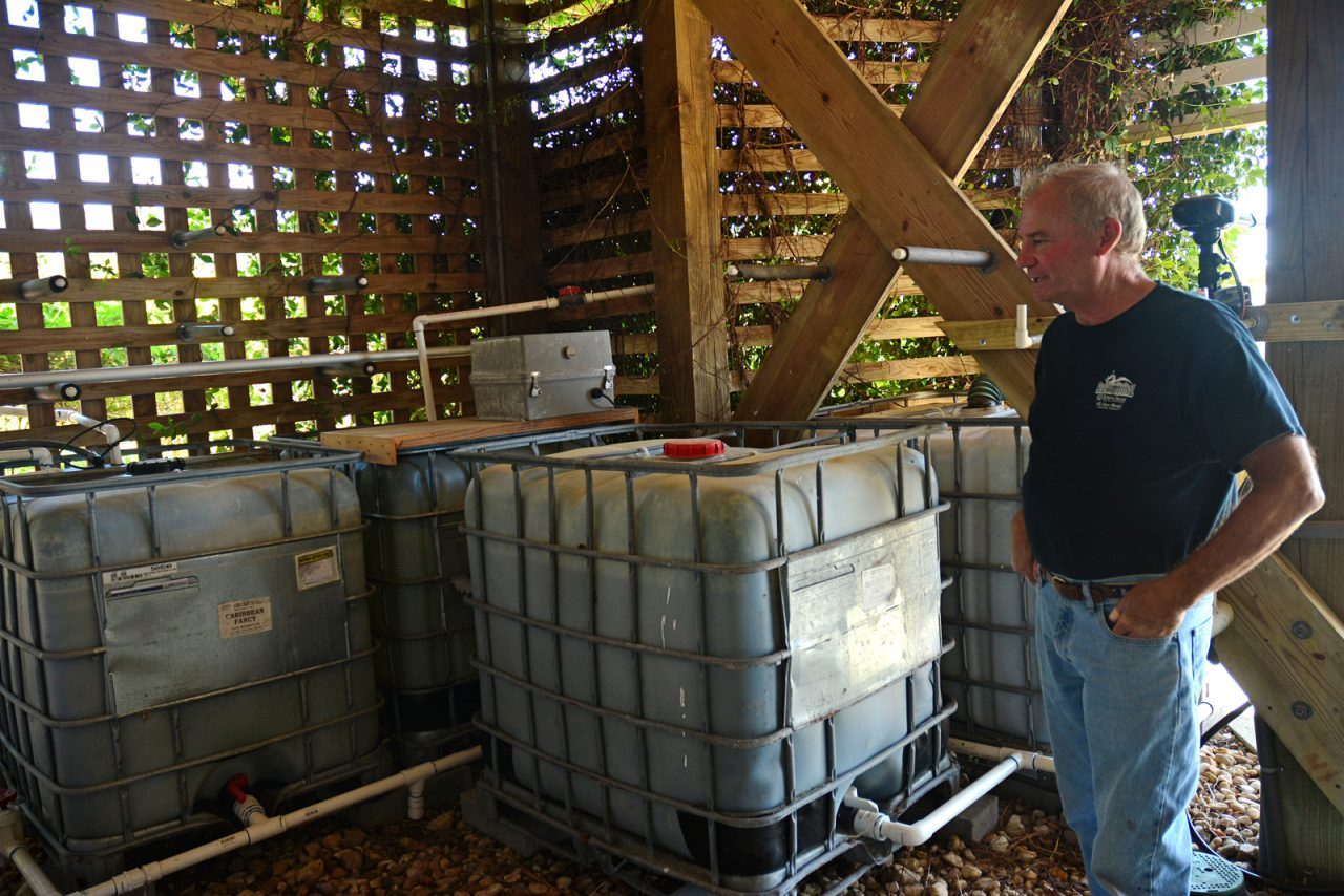 Tom Byers of Kitty Hawk explains the system of cisterns used for irrigation and other purposes around the home. Photo: Kip Tabb