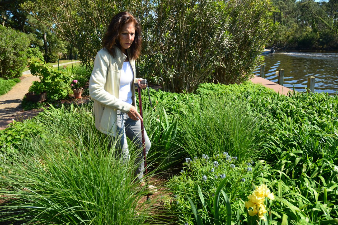 Vickie Byers shows off the native plants in her garden, which is irrigated with captured rainwater, at her home in Kitty Hawk. Photo: Kip Tabb