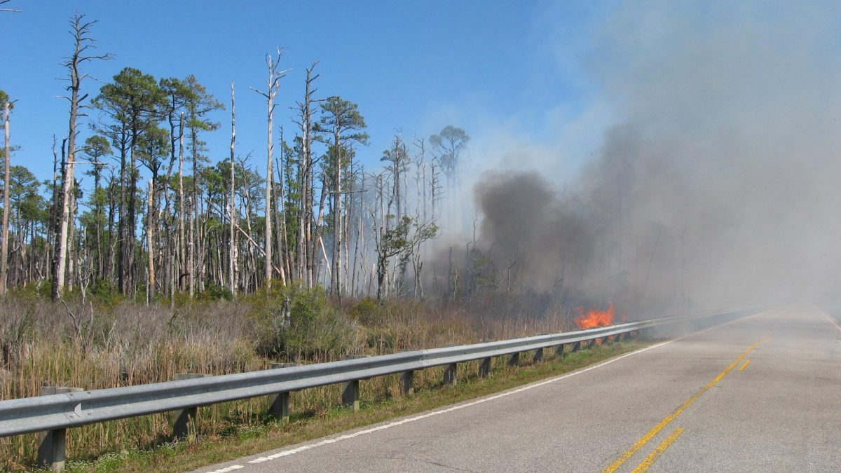 The Whipping Creek Road Fire began on the afternoon of April 18, 2016 near the Hyde and Dare County line. It began on private land but quickly moved onto the Alligator River National Wildlife Refuge and US Air Force's Dare Bombing Range.